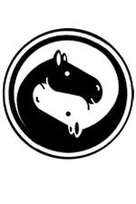 foal par Bachir
